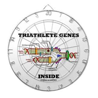 Triathlete Genes Inside (DNA Replication) Dartboard With Darts