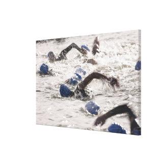 Triathletes competing in swim leg of triathlon. canvas print