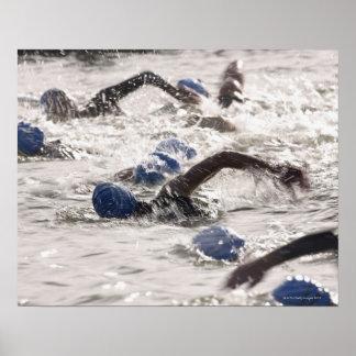 Triathletes competing in swim leg of triathlon. poster
