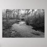 tributario Primavera-alimentado al río azul (Col D Impresiones