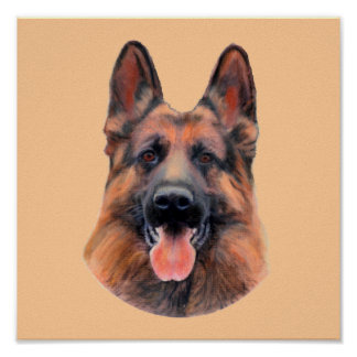 Tribute to the German Shepherd Poster
