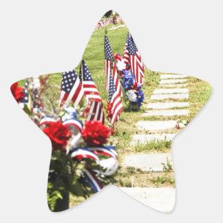 Tributo del día del monumento/de veteranos pegatina en forma de estrella