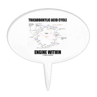 Tricarboxylic Acid Cycle Engine Within Krebs Cycle Cake Topper