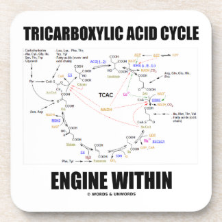 Tricarboxylic Acid Cycle Engine Within Krebs Cycle Drink Coaster