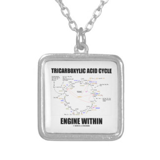 Tricarboxylic Acid Cycle Engine Within Krebs Cycle Silver Plated Necklace