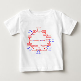 tricarboxylic acid cycle shirts