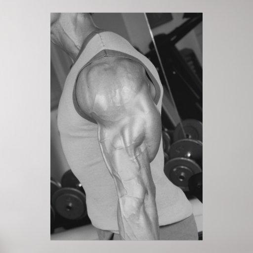 Triceps Gym Wall & Health Club Poster