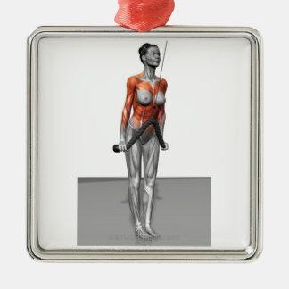 Triceps Push Downs Metal Ornament