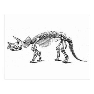 triceratops-2 postcard