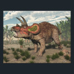 "Triceratops dinosaur - 3D render Photo Print<br><div class=""desc"">Triceratops dinosaur among cycadeoidea and onychiopsis plants and pachypteris trees - 3D render</div>"