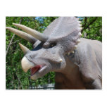Triceratops/dinosaurios Tarjetas Postales