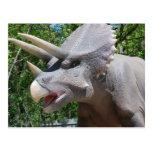 Triceratops/Dinosaurs Postcard