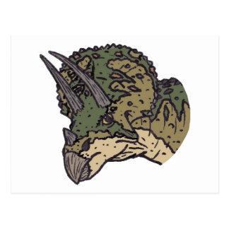 Triceratops Head Postcard