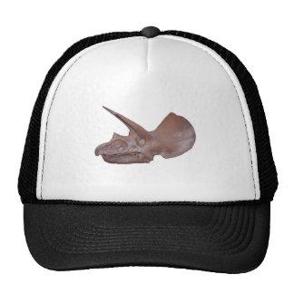 Triceratops Skull Hats
