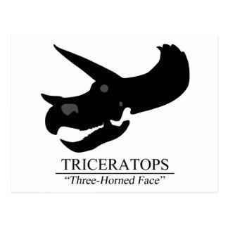 Triceratops Skull Postcard