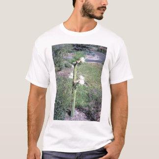 Trichocereus Pachanoi T-Shirt
