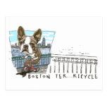 Triciclo de Boston Terrier Postal