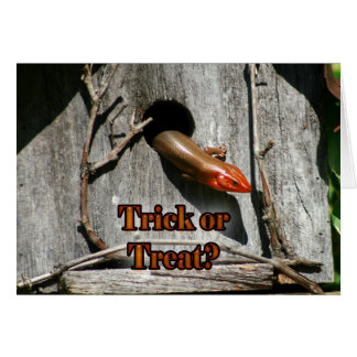 Trick or Treat? Large Lizard hanging out Birdhouse Card