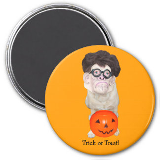 Trick or Treat! Magnet