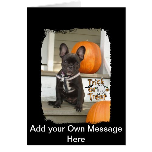 Trick or Treat Pup Card Halloween invite