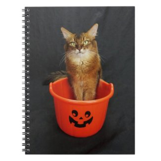 Trick or Treat Somali Cat Notebook
