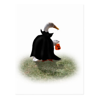 Trick or Treat Time for Dracula Duck Postcard
