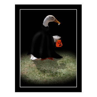 Trick or Treat Time for Dracula Duck Post Cards