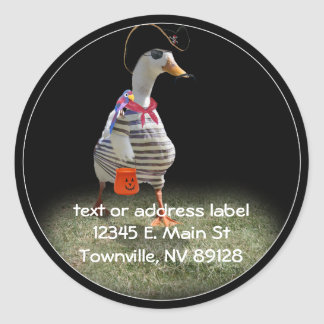 Trick or Treat Time for Pirate Duck Classic Round Sticker