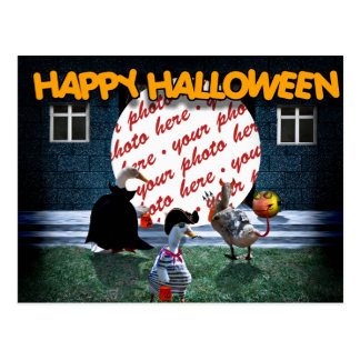 Trick or Treat Time for these Little Ducks Postcard