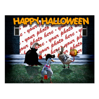 Trick or Treat Time for these Little Ducks Post Cards