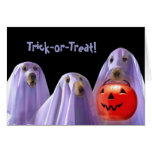 Trick-or-Treating Ghost Dogs Halloween Card