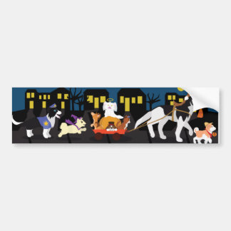 Trick or Treating Pets Bumper Sticker