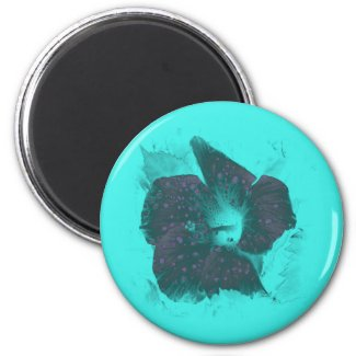 Tricolor Abstract Hibiscus zazzle_magnet