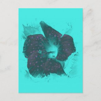 Tricolor Abstract Hibiscus zazzle_postcard