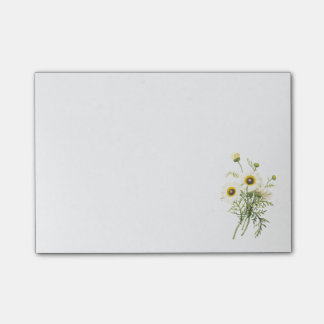 tricolor daisy(Chrysanthemum carinatum) by Redouté Post-it Notes