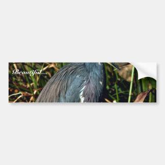Tricolor Heron Bumper Sticker
