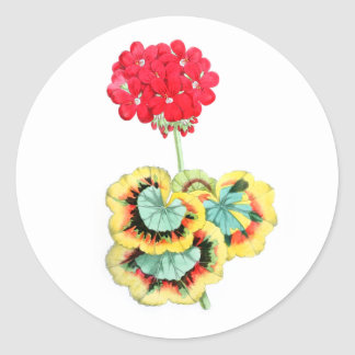 Tricolor-Leaved Pelargonium, Meteor Round Stickers