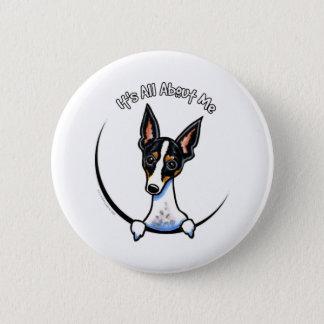 Tricolor Rat Terrier IAAM Pinback Button