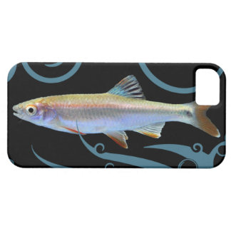 Tricolor Shiner with Stylized Waves iPhone 5 Cover