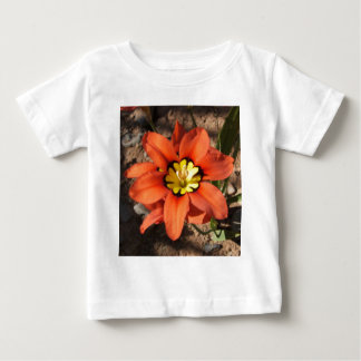 Tricolor Sparaxis flower Baby T-Shirt