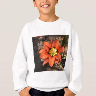 Tricolor Sparaxis flower Sweatshirt