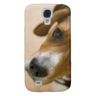 Tricolored Beagle Dog Background Galaxy S4 Cover