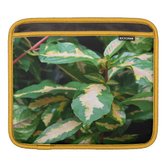 Tricolored Caricature Plant iPad Sleeve