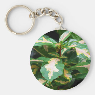 Tricolored Caricature Plant Keychain