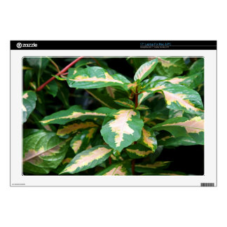 Tricolored Caricature Plant Laptop Skin