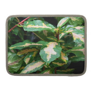 Tricolored Caricature Plant MacBook Sleeve MacBook Pro Sleeve