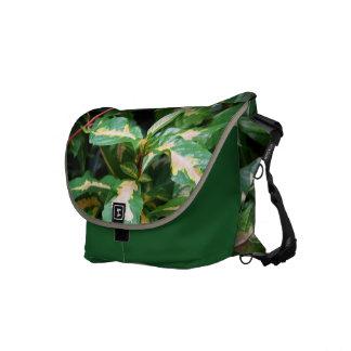 Tricolored Caricature Plant Messenger Bag