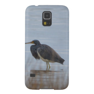 Tricolored Heron Bird Nature Samsung Galaxy Nexus Cover