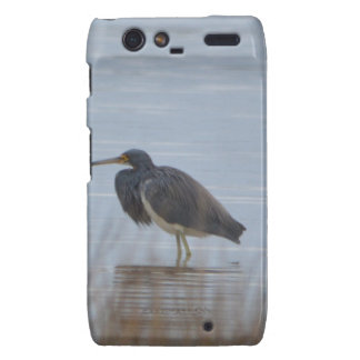 Tricolored Heron Bird Nature Droid RAZR Covers