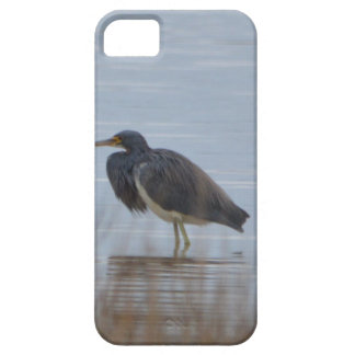 Tricolored Heron Bird Nature iPhone 5 Case